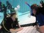 Halle 27.02.2009