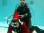 Weihnachtstauchen 2012